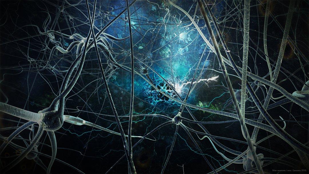 Beynin Nöroplastite mucizesi